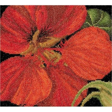 492A Thea Gouverneur East Indian Cherry Cross Stitch Kit