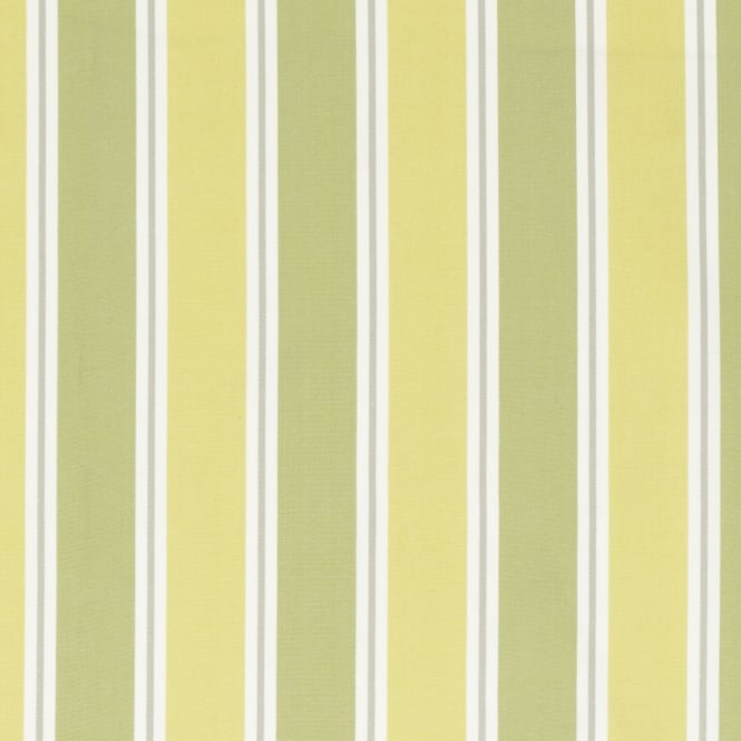 Clarke & Clarke F0501/02 Stamford Citrus Cotton Fabric