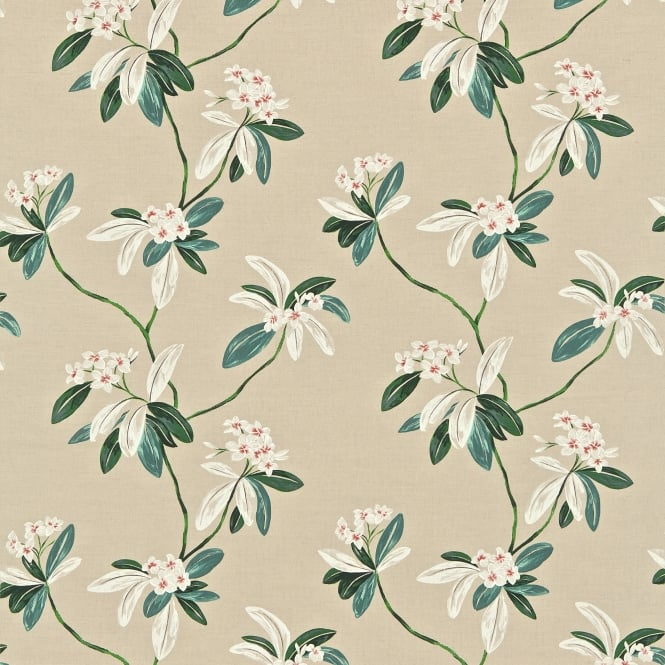 Sanderson DRCH222083 Oleander Orange/Teal
